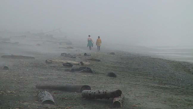 Quiet walk in the fog.jpg