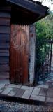 mikes backyard, Clovis California
