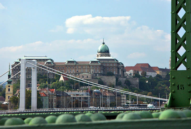 Buda Palace and Danube bridges