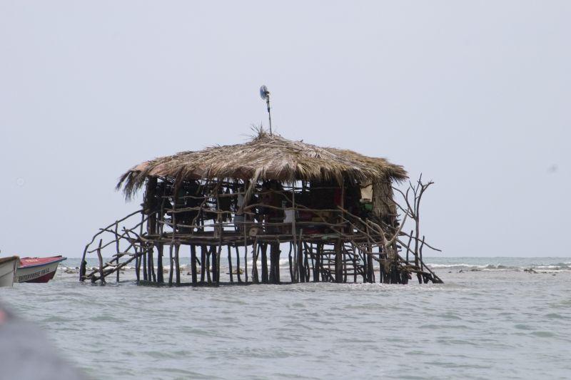 Next stop, Pelican Bar