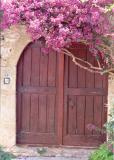 Flower Doors