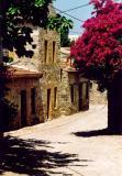 Street Scene Turkey