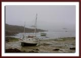 Fog and low tide...