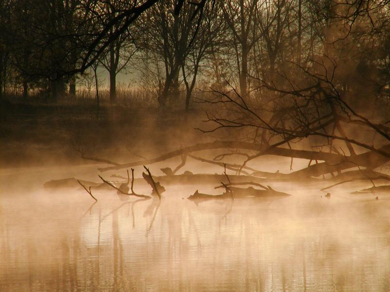 River Mist #2  (Olympus C2100)