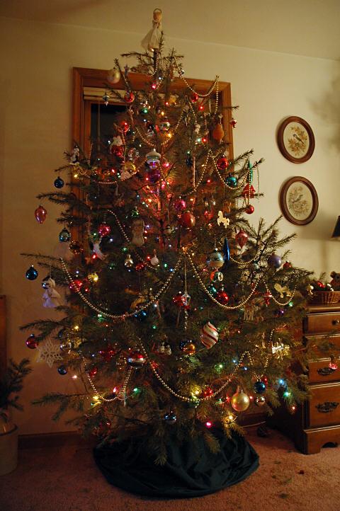 tree_0041.jpg