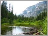 lake in the bitterroot II