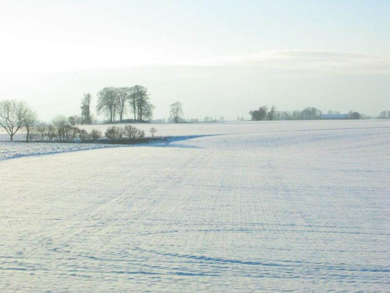 Winter in Skåne