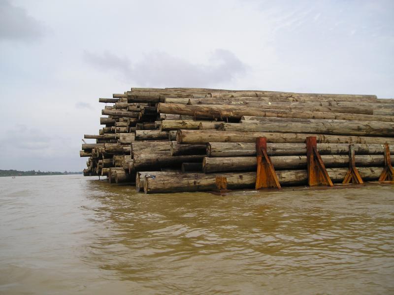 lumber on the jambi river