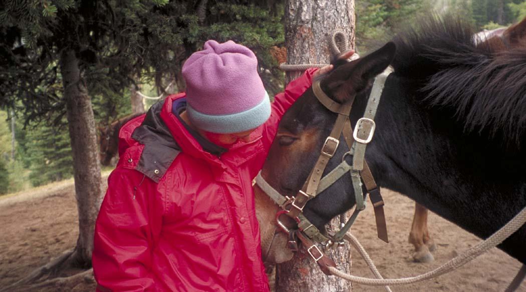 Karen Nolan At Crow Lake (Pasayten Wilderness)