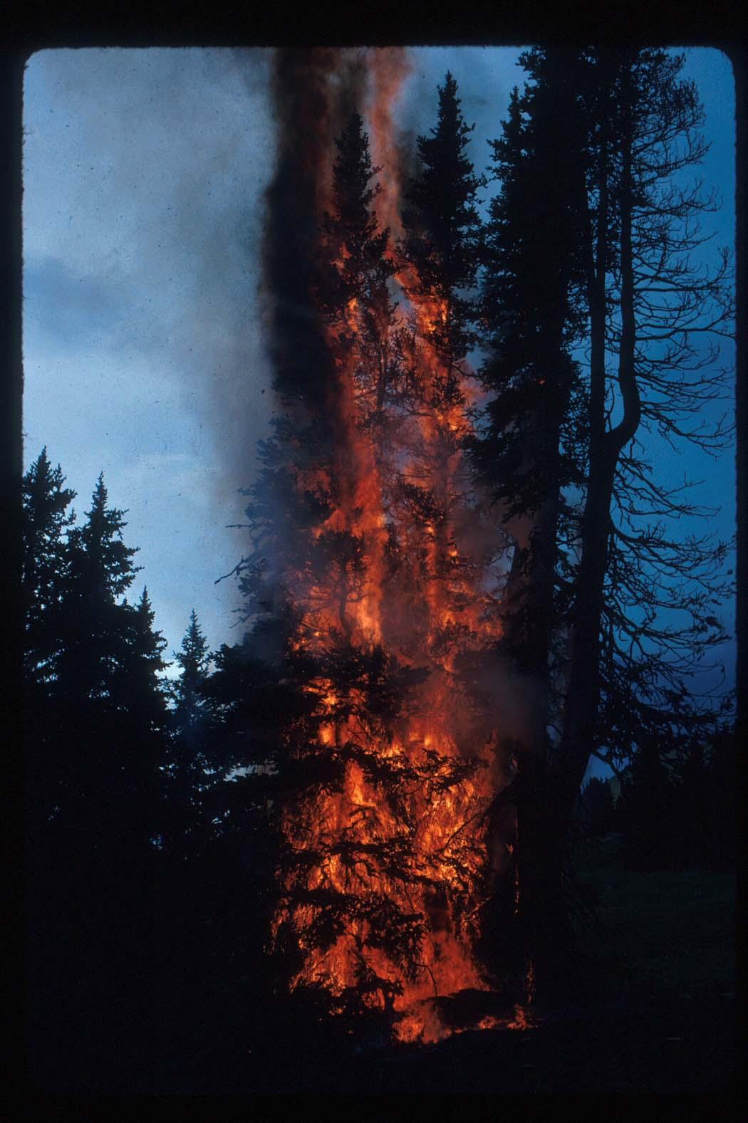 Lightning Hits Our Camp:  Rock Mountain, Pasayten Wilderness