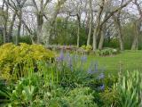 spring yard 5-20-02.jpg