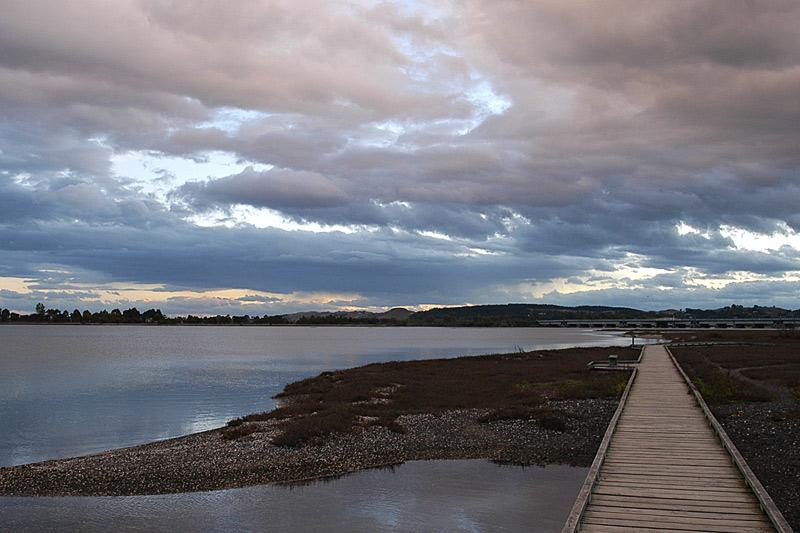 The Boardwalk - Ahuriri Lagoon