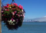 View from Sausalito
