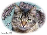 Hannah Dec 2001