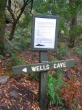 Wells Cave