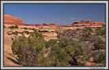 Needles district view from the pass