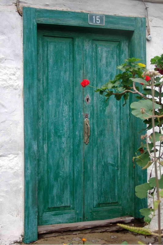 Geen door with red flower, nr 15