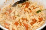 rotini pasta and tomato sauce (large)