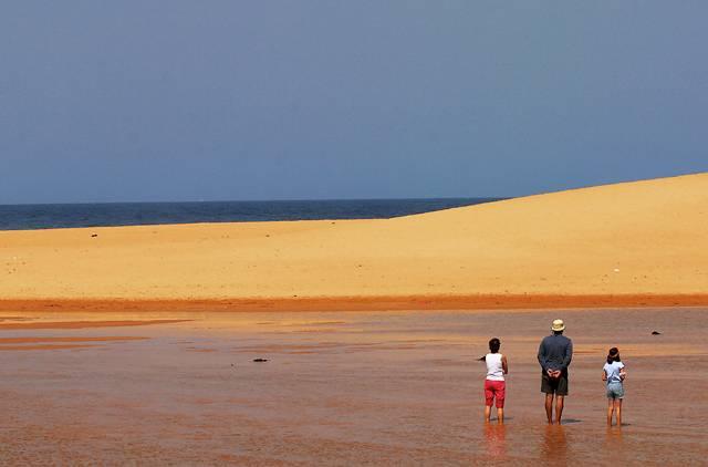 Three at Narrabeen Lagoon dunes