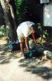 Sunset Park 2001