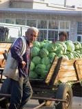 Transporting crops 2Robert van den Heuvel