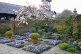 Liz & Garden