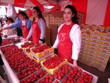 California Strawberry Festival in Oxnard, CA