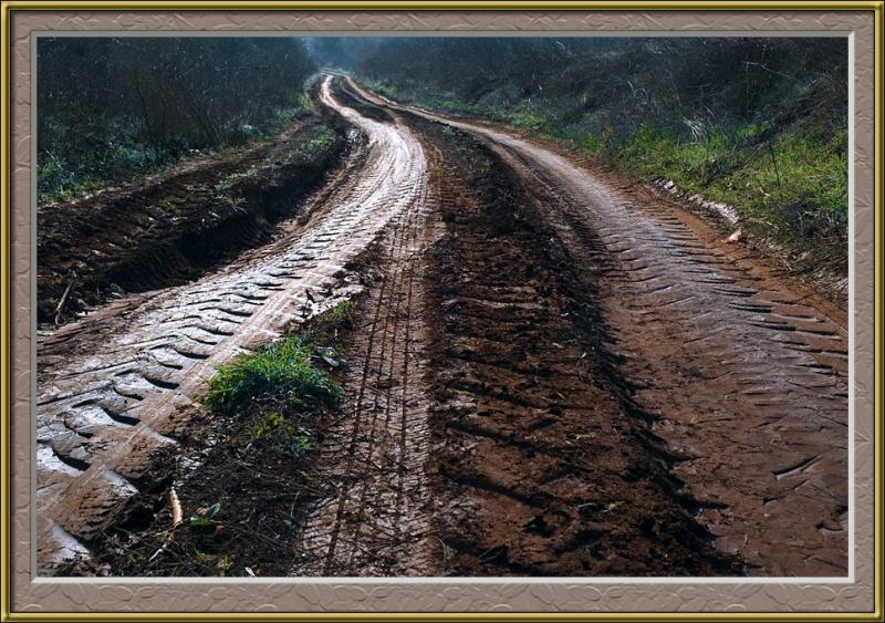 Mud textures