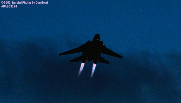 USN F-14 Tomcat military aviation stock photo #7017