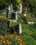 Sighisoara - German Cemetery