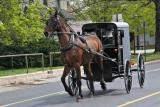 Amish 036.jpg