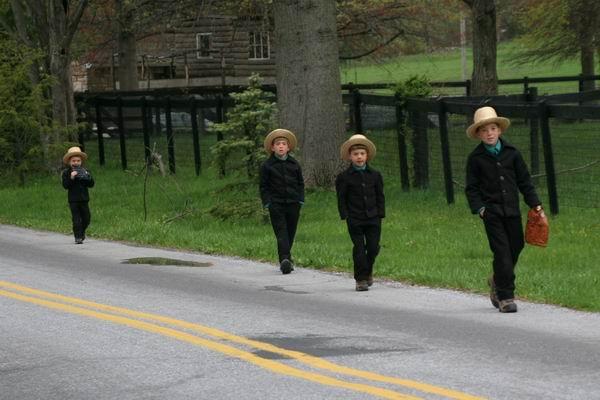 Amish 063.jpg
