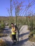 Becky and Brendon - Anza Borrego, Spring 05