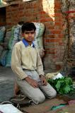 Boy at a roadside shop in Gwalior