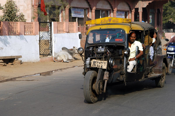 Gwalior has these wild tuk tuks on steriods called tempos