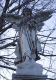 angel-and-vines.jpg