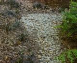 dry stream bed in dining room bed