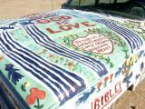 Artwork On One Of Leonard's Vehicles