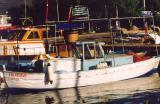 Fishing Boat in Turkey
