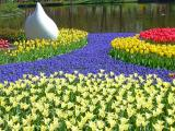 Tulip Time in Holland