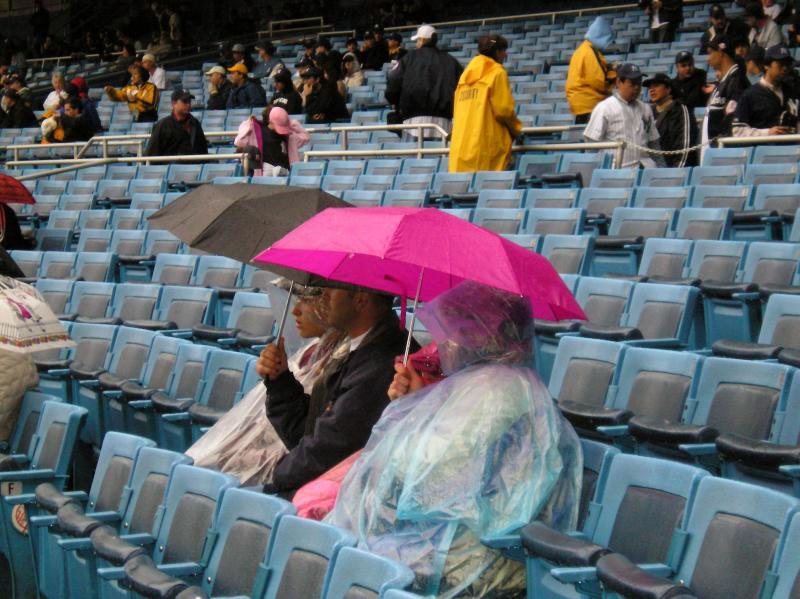 Yankee Rain Umbrella.jpg