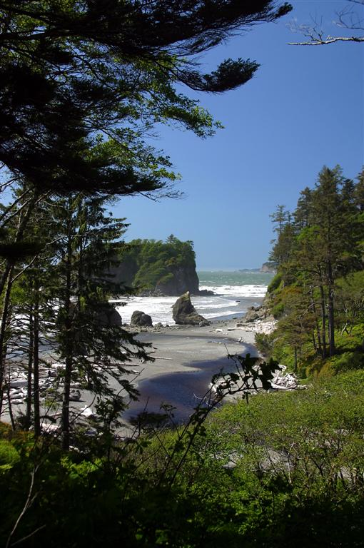 Pacific Ocean - Olympic NP