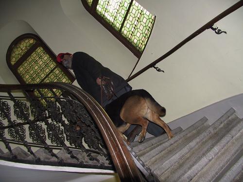 rathausinspektion