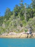 Whitsunday Islands.