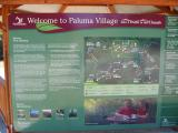 Our arrival at Paluma village after a harrowing drive up the mountain.