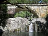 Crystal Falls, on the way down from Paluma.