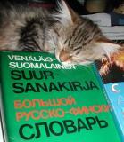 Learn Russian while sleeping