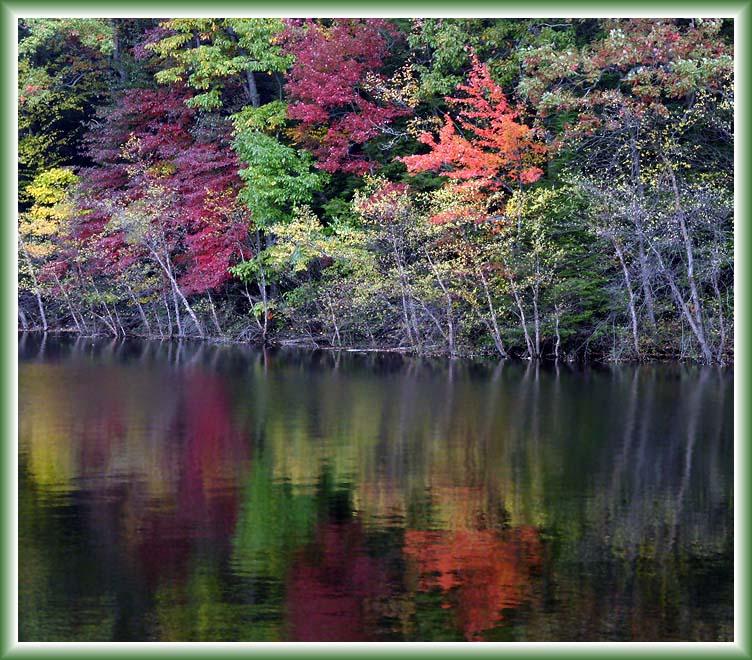 Fall Colors of Lake Scranton