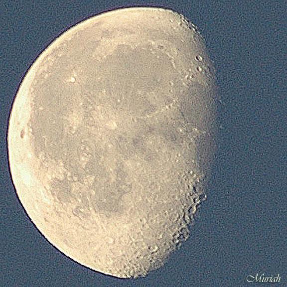 Mornin Moon Wanin