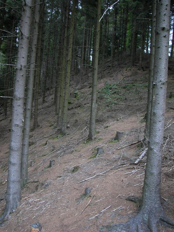 2003-09-06 12-44-25.JPG